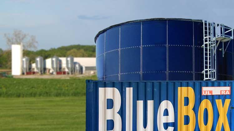 BlueBox Ultra Pig Manure